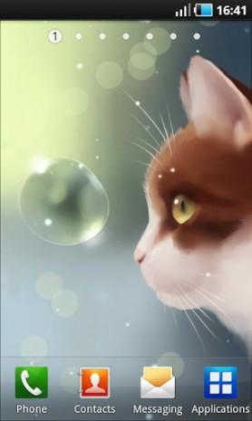 Скриншот Curious Cat – любопытный кот
