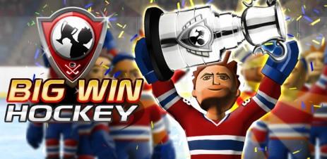 BIG WIN Hockey 2014 – своя хоккейная команда - thumbnail